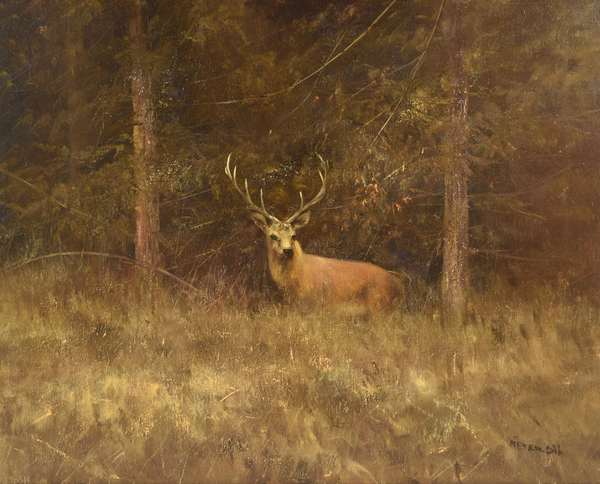 The October Sportsman's Auction- A live auction Schedule a private preview now!
