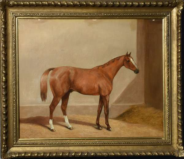 Equestrian oil on canvas, unsigned, 17