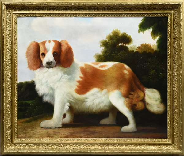 An early oil painting, portrait of the 1st Duke of Marlborough Blenhiem's Spaniel, 18
