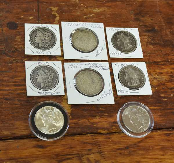 Ref 19: Six Morgan & two Peace silver dollars (705-2)