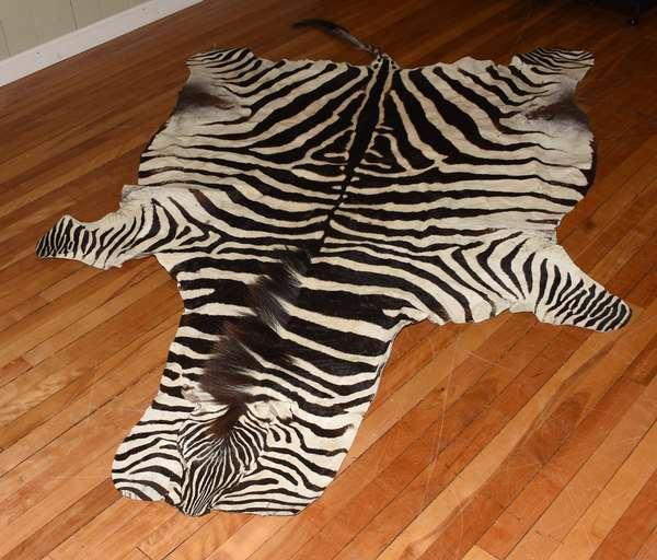 Zebra skin (708-4)