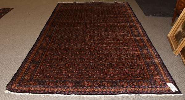 Oriental rug, 6' x 9'5