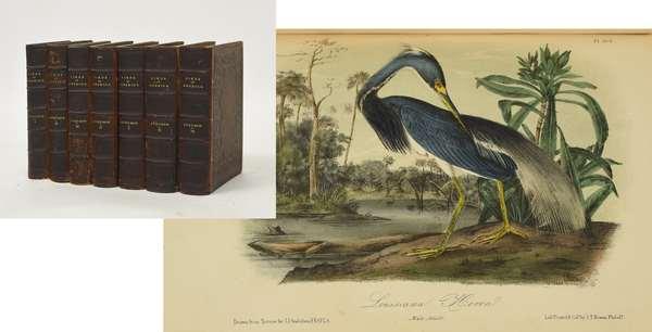J.J. Audubon's