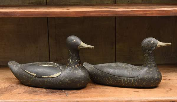 """Two early 20th C. duck decoys, appear to be a pair in old paint, 14""""L."""