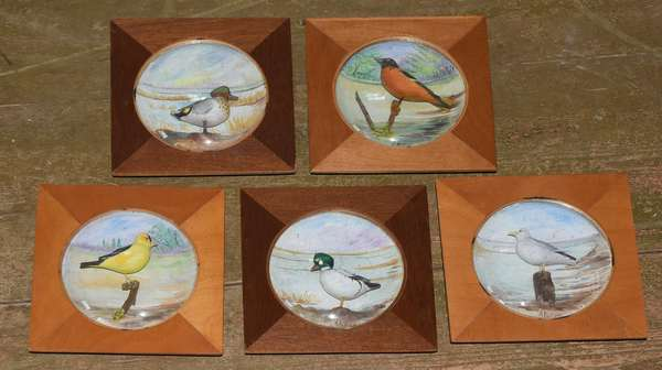 Group of five carved and painted birds in shadow box frames signed Peltier