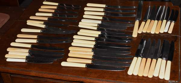 Ref T: Approx. fifty bone handled knives - various sizes