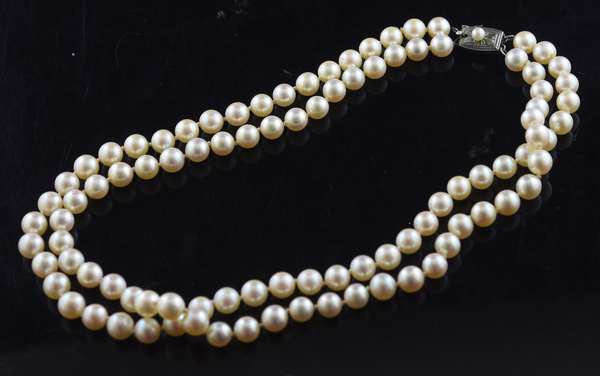 "14.25"" double strand of pearls with silver clasp, choker length"