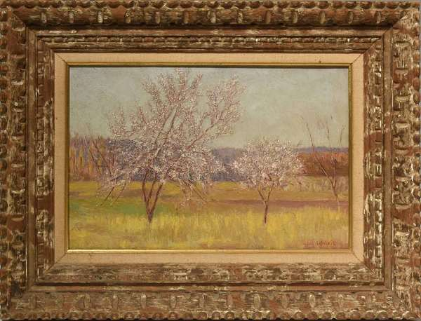 """20th C. Impressionist oil on canvas, flowering trees, Signed L. Silvie, 10.75"""" X 16"""" Condition: dirt build up on canvas"""